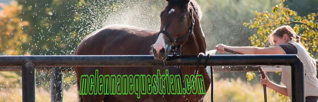 Mc lennan equestrian